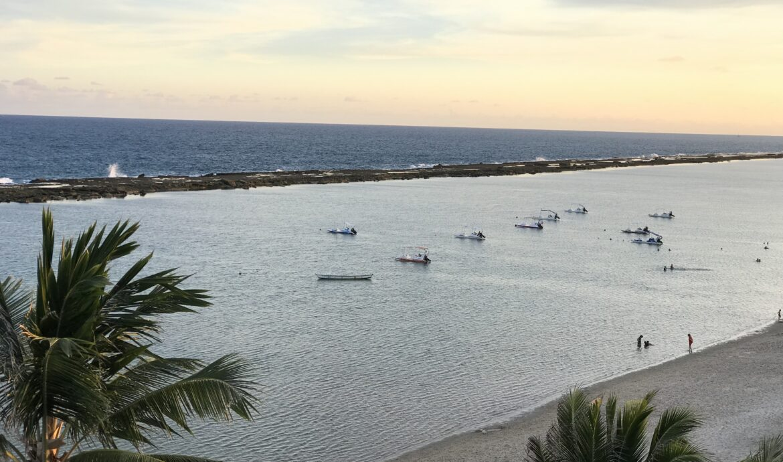 ALAGOAS, Caribe Brasileiro